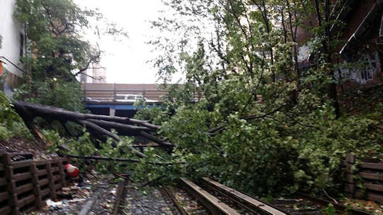 Franklin Avenue Shuttle service restored after tree on tracks