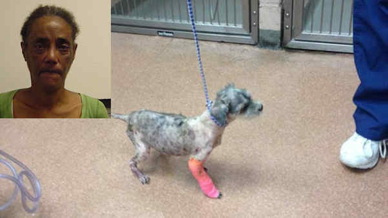 Woman who allegedly dropped abused dog at Hempstead clinic arrested