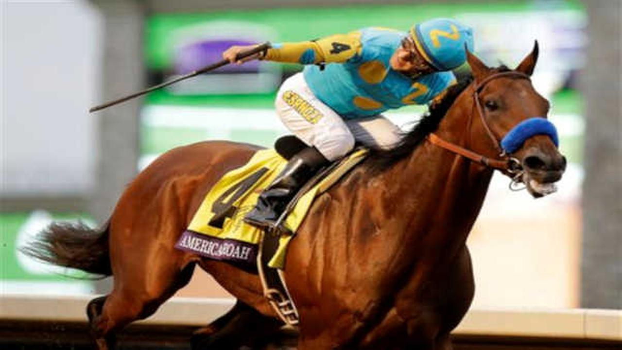 American Pharoah, with Victor Espinoza up, wins the Breeders Cup Classic horse race at Keeneland race track.