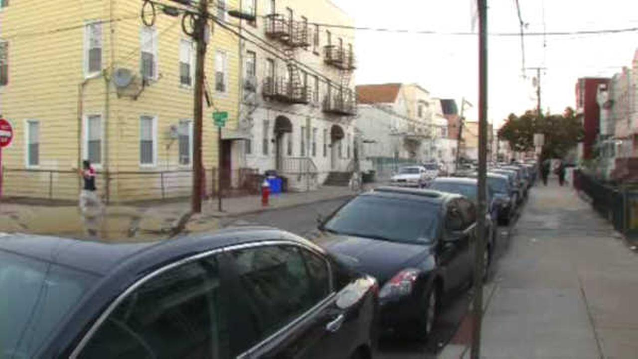 Police: Pit bull leaves Jersey City man in critical condition