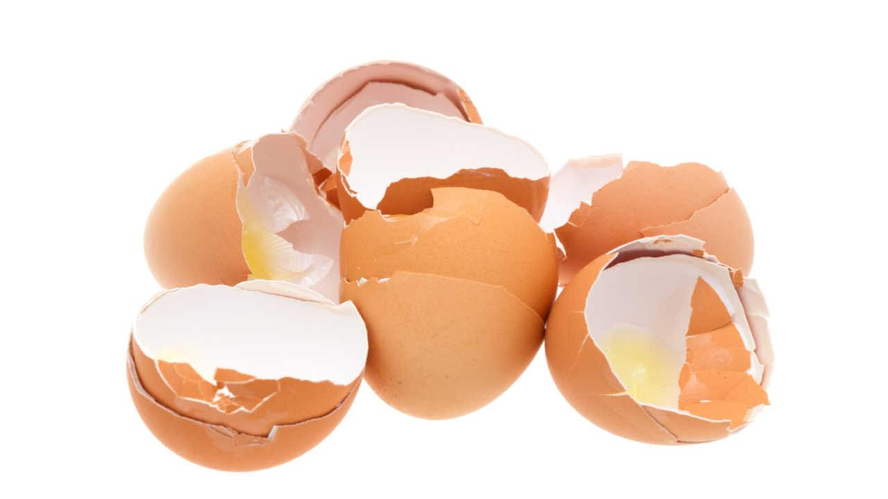Utah mother charged with taking daughter to toss eggs at homes