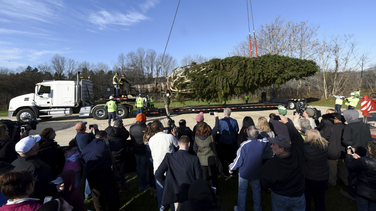 Residents of Walkill, N.Y. watch as this years Rockefeller Center Christmas tree is craned onto a flatbed truck.