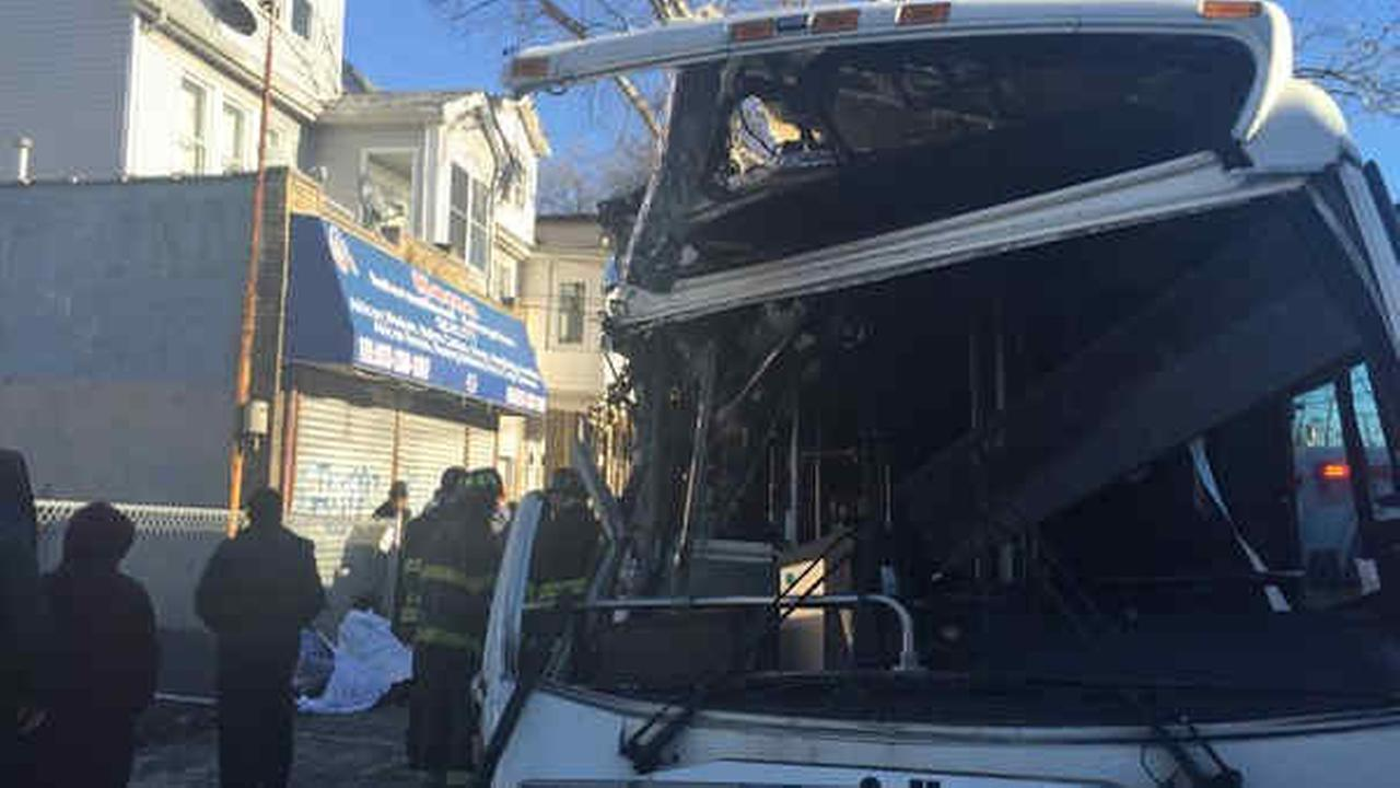 31 hurt when New Jersey Transit bus crashes into tree in Newark