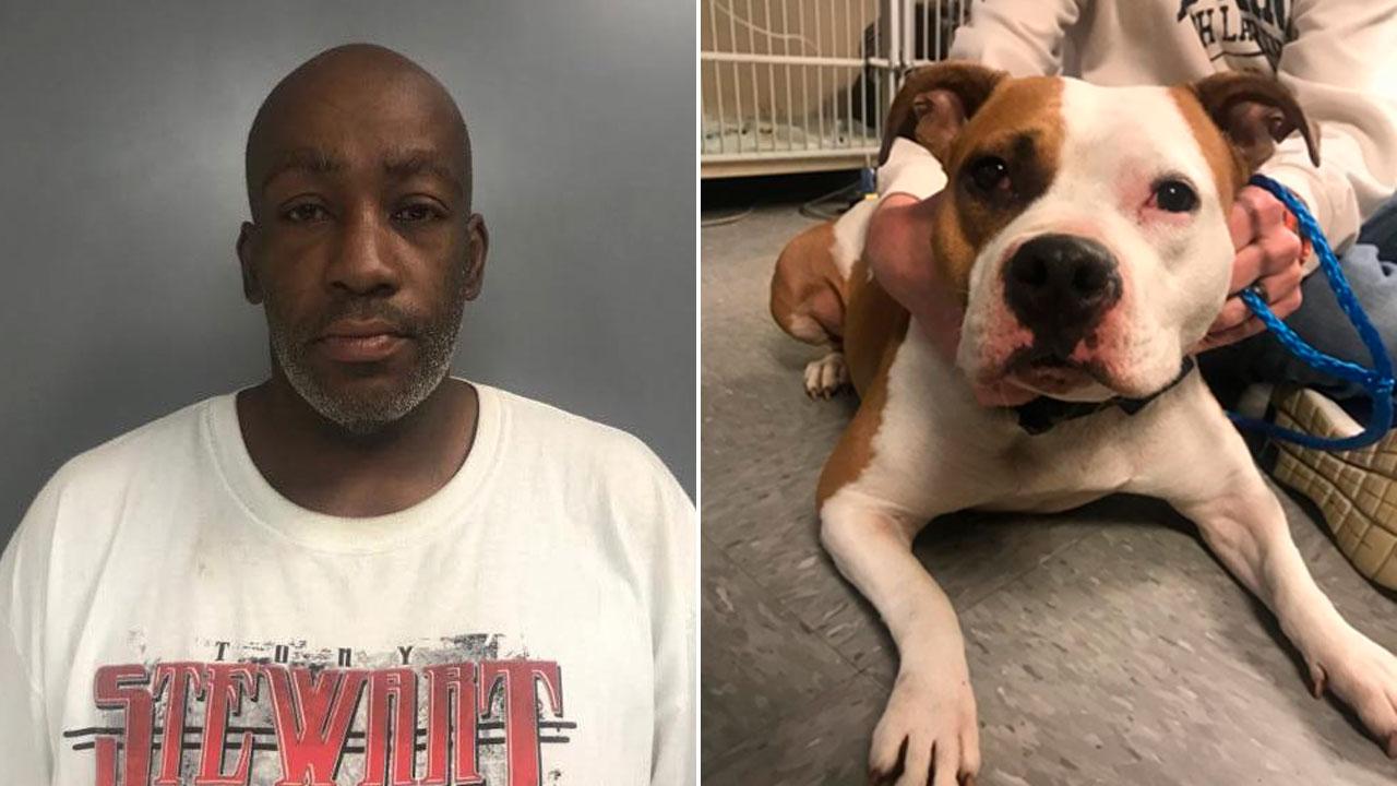 Man accused of choking, beating dog at McDonald's on Long Island