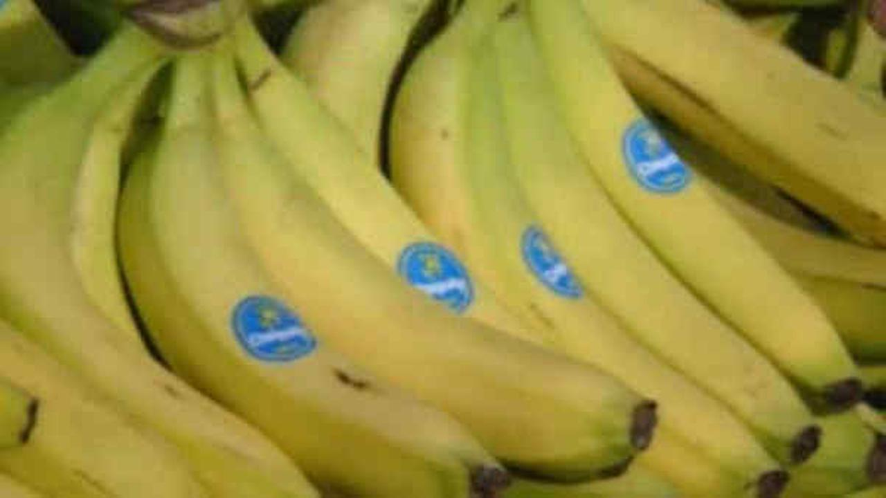 Bananas under threat of extinction due to deadly fungal threat