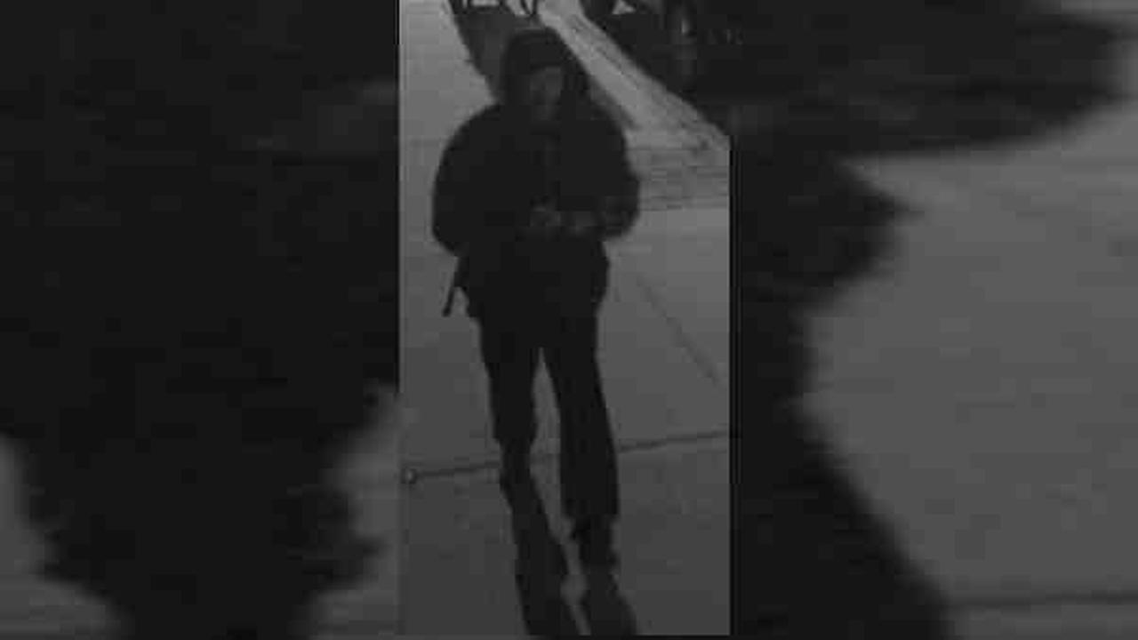 NYPD looking for suspect who drew swastikas in Marine Park, Brooklyn