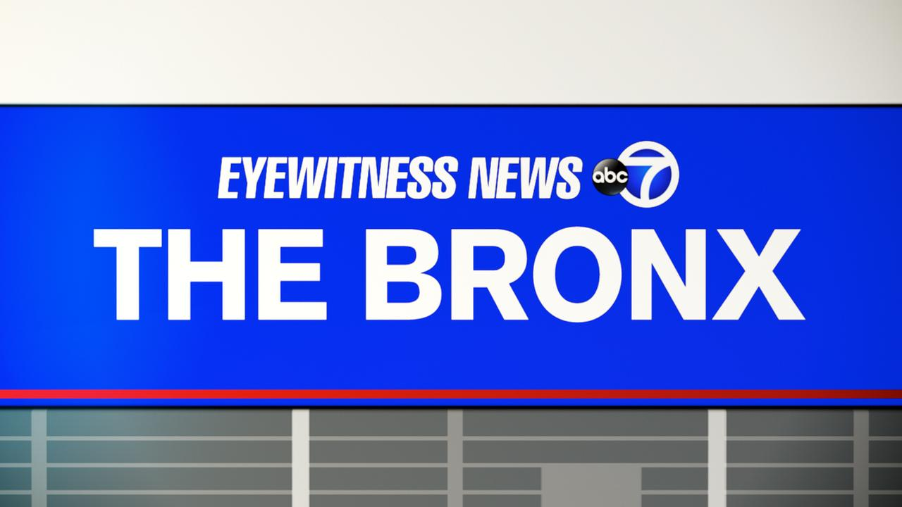 Bronx double shooting in Foxhurst leaves 2 hurt