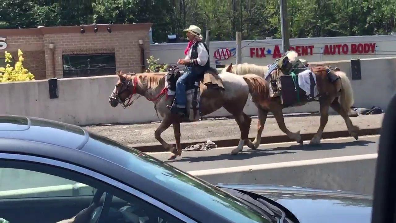Cowboy on horse who snarled traffic on Outerbridge Crossing arrested