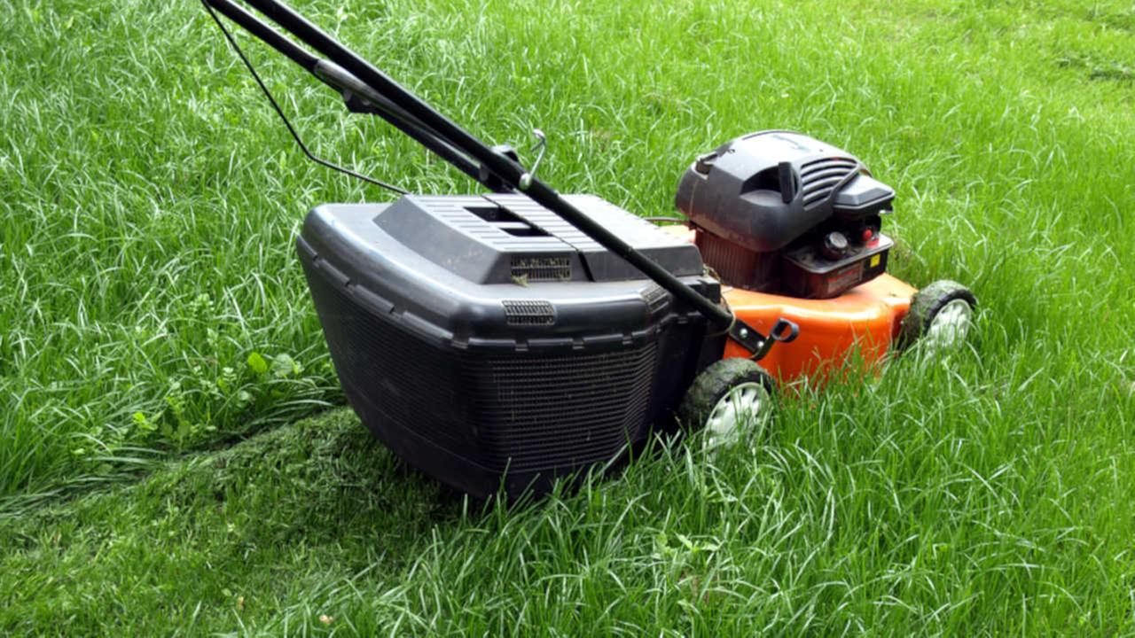 Sheriff: Naked couple arrested on stolen lawn mower
