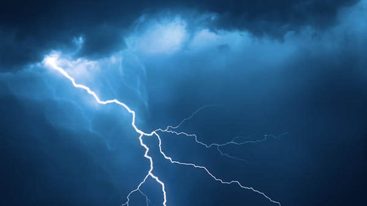Dog finds help for 2 Utah girls struck by lightning