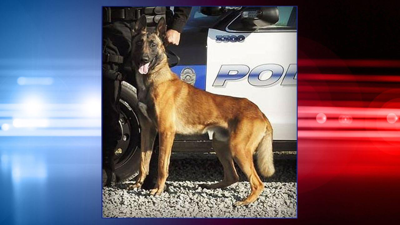 California K-9 officer dies after car air conditioning fails