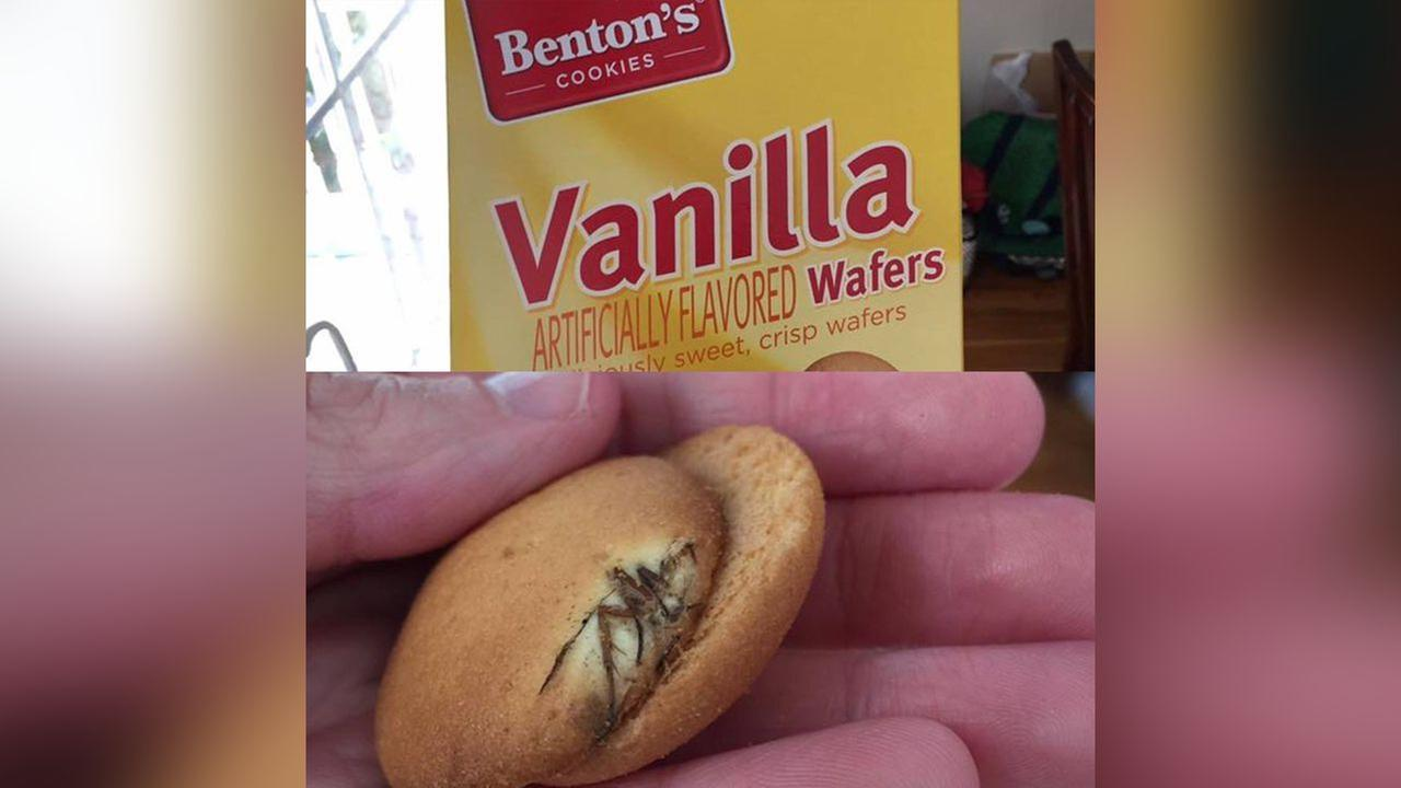 Grocery store chain investigating report of bug in box of vanilla wafer cookies