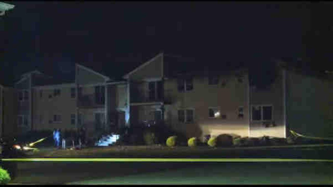 Multiple people were reported dead in a two-alarm fire that burned through at least four apartments in Hillsborough.