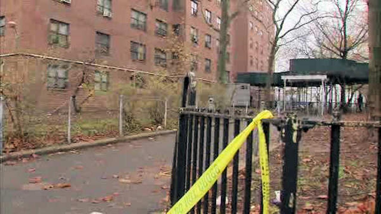 27-year-old woman fatally shot outside Brooklyn's Pink Houses