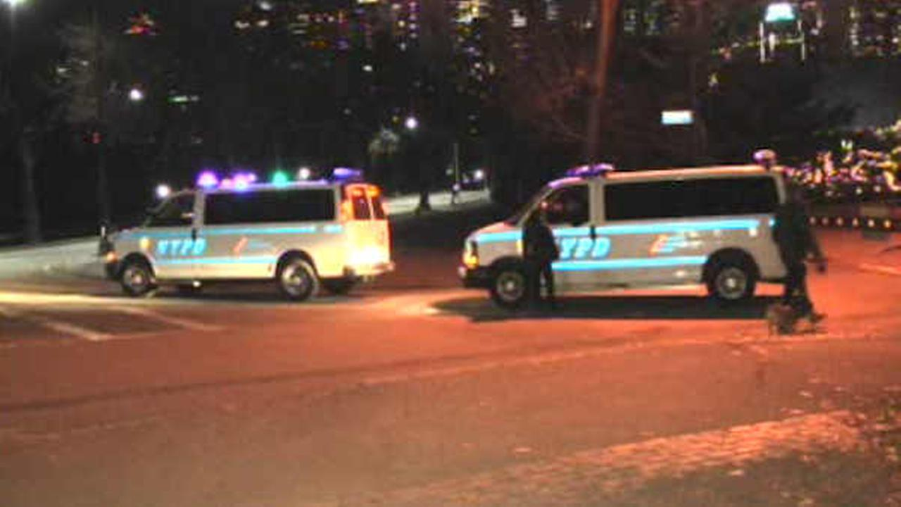 25-year-old man punched, robbed by group of men in Central Park