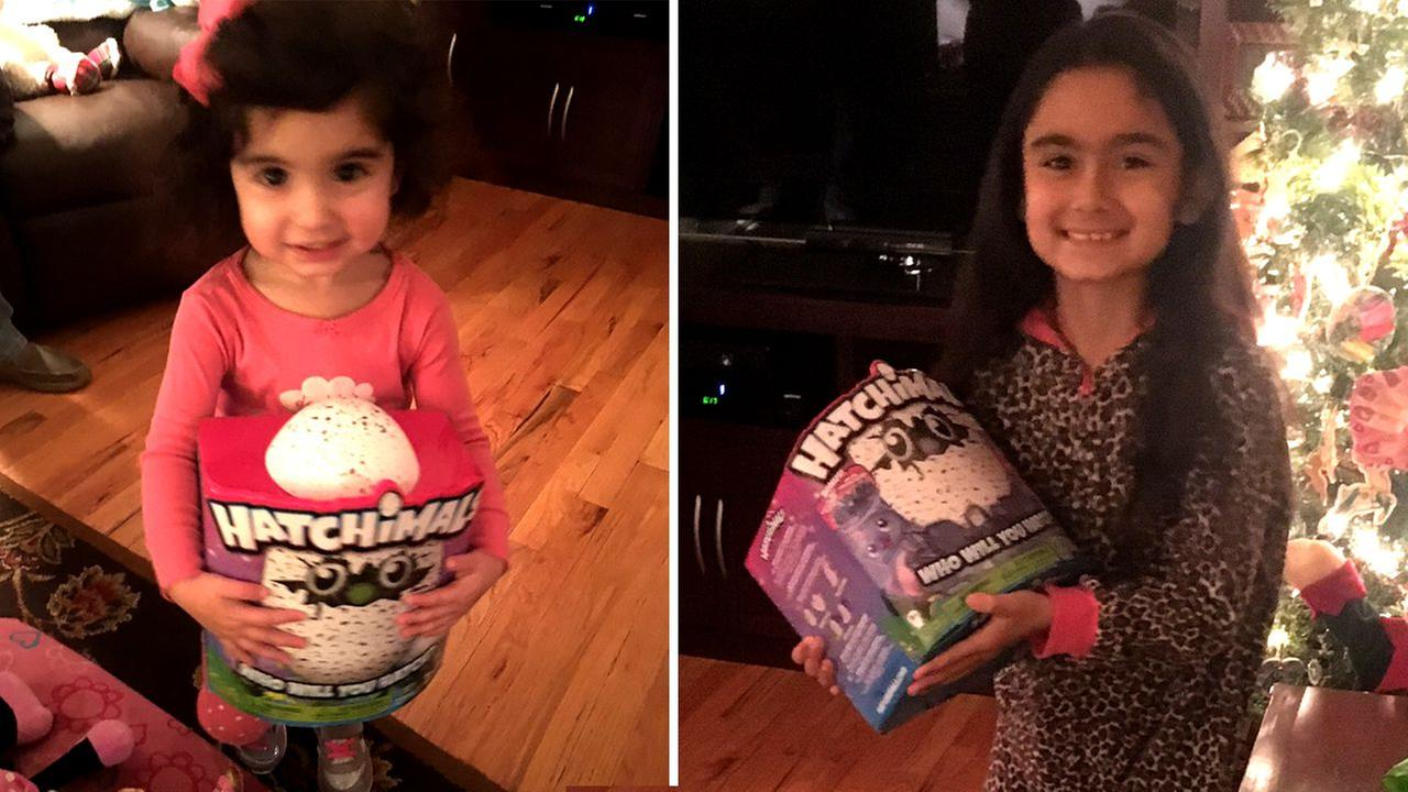 Hatchimals hero comes to the rescue of New Jersey mom after viral online rant