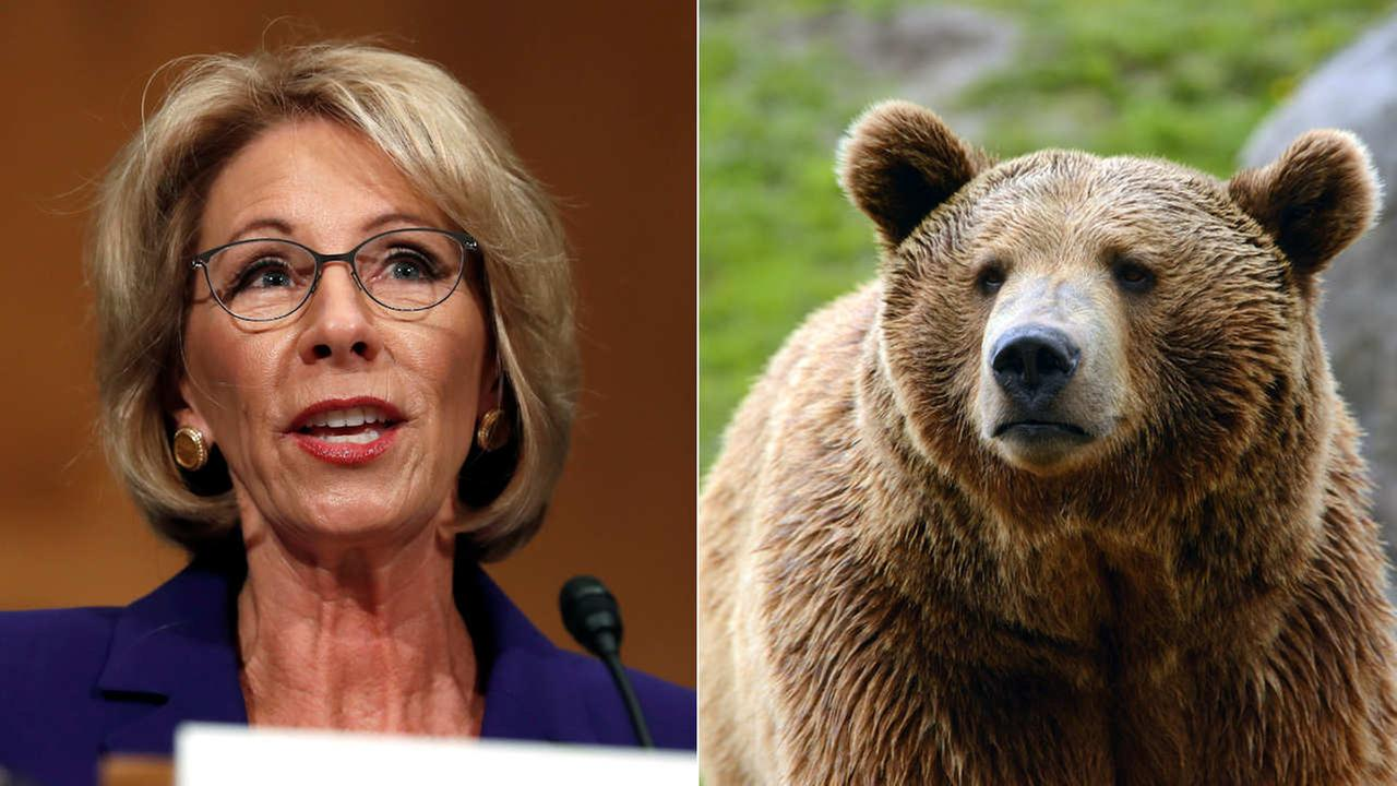 Left: Education Secretary-designate Betsy DeVos testifies on Capitol Hill in Washington (AP Photo/Carolyn Kaster), Right: Shutterstock