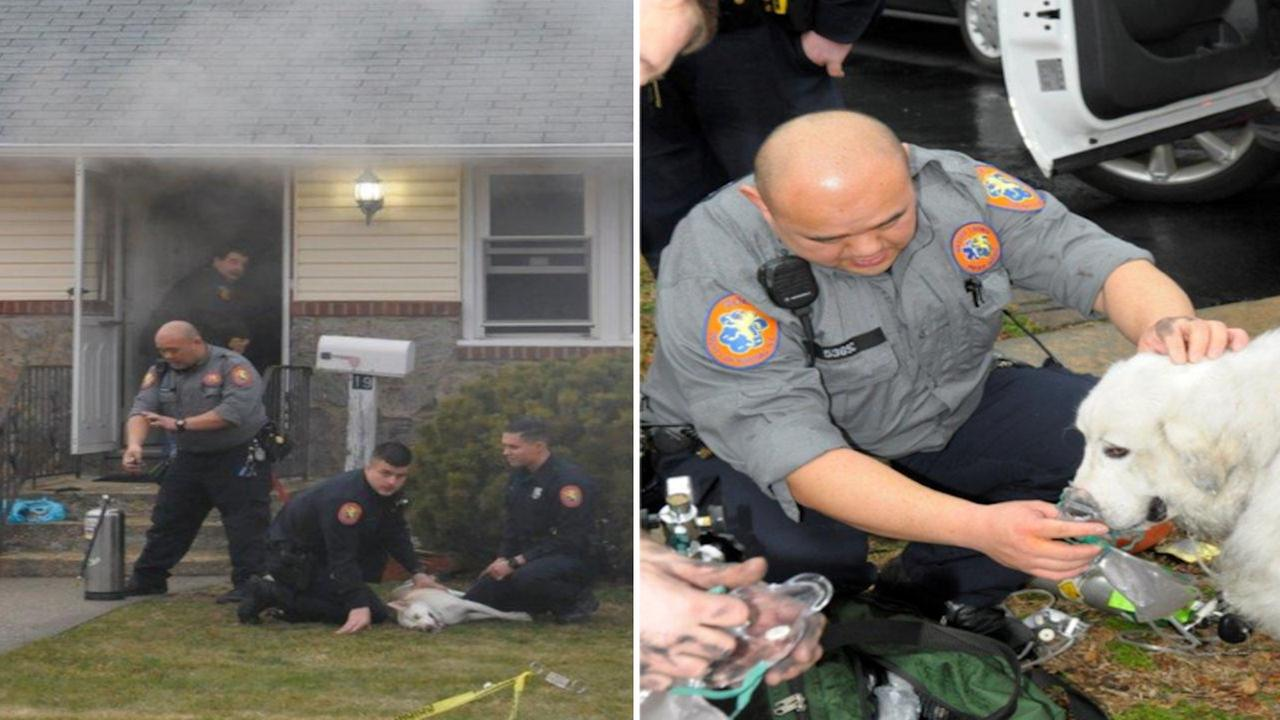 Nassau Police rescue dog from burning home in Hicksville