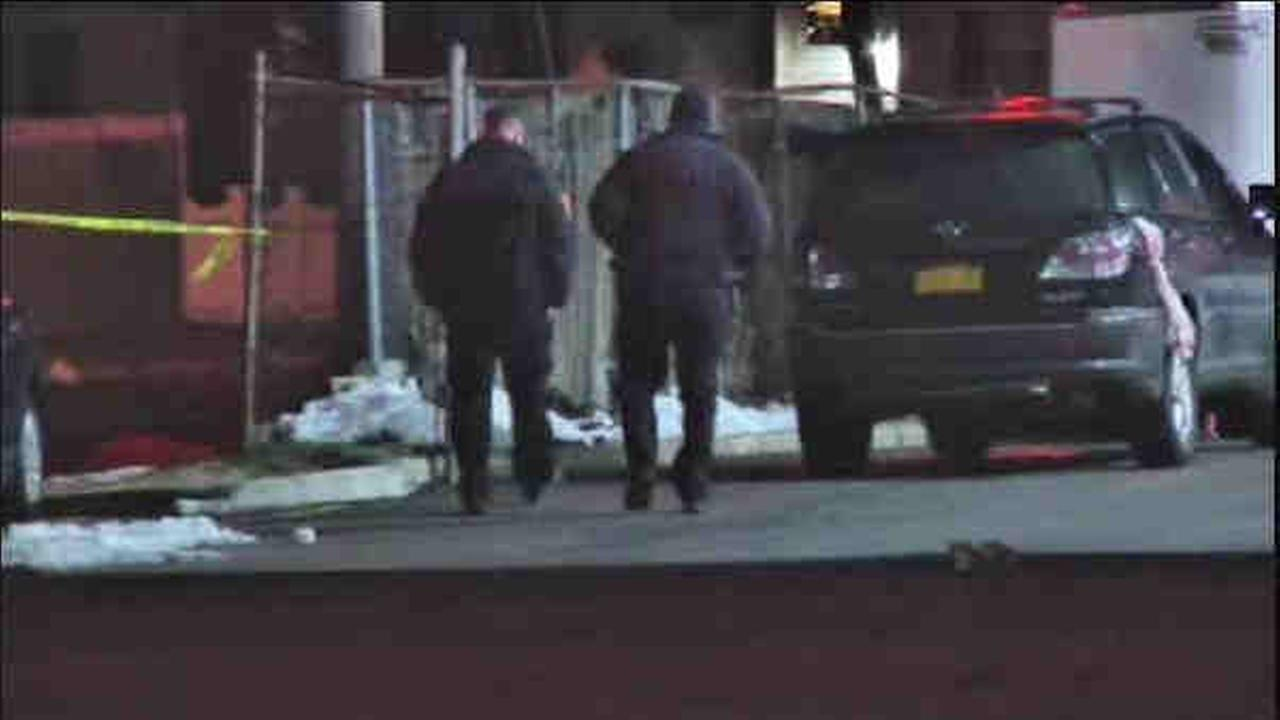 Pedestrian Fausto Rodriguez, 38, of Copiague, was pronounced dead after he was hit by a car in Copiague.