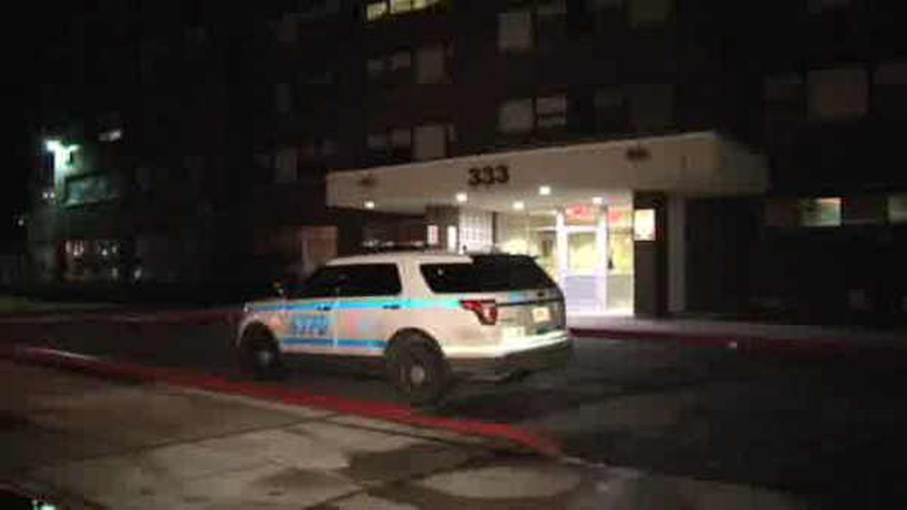 Woman fatally stabbed in Queens; boyfriend in custody