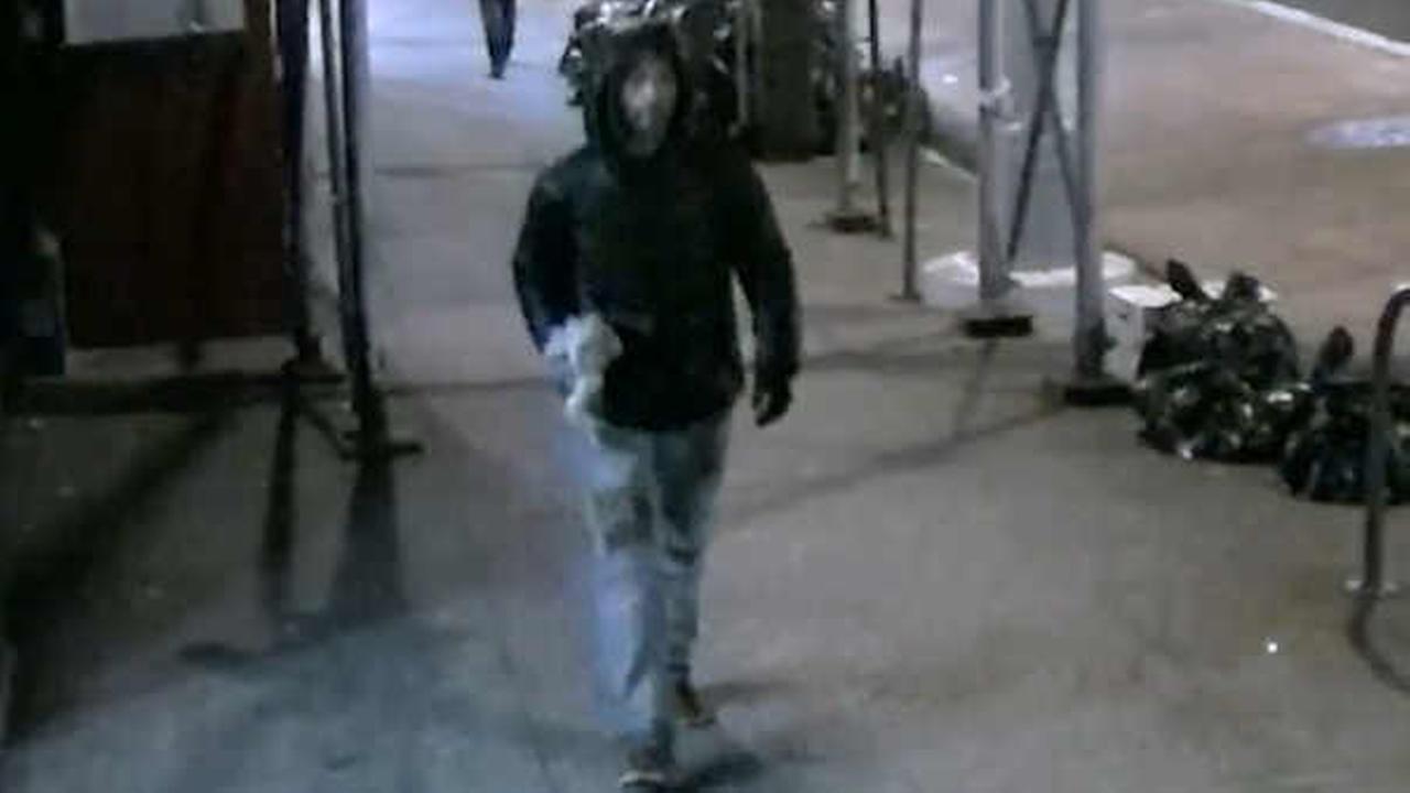 NYPD surveillance image