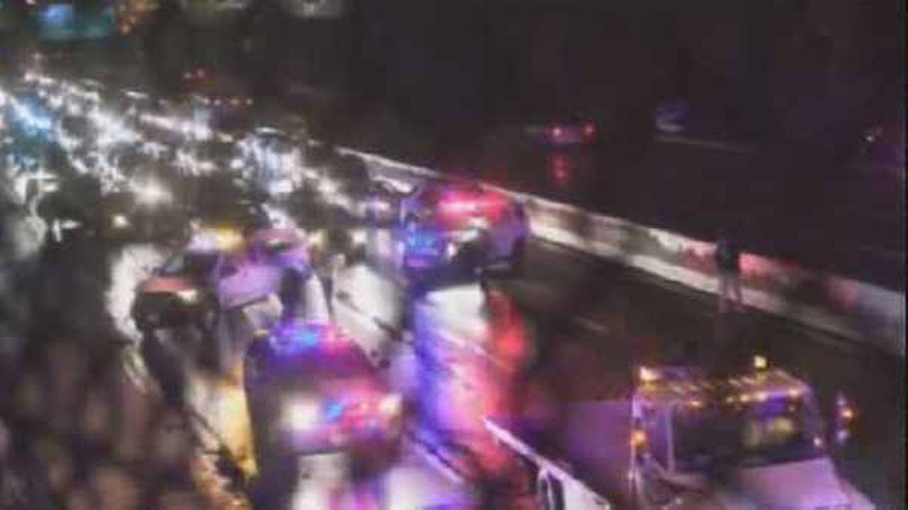 A pedestrian was killed on the Garden State Parkway overnight Friday.