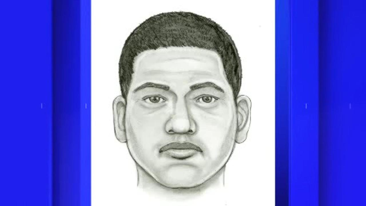 Police release sketch of suspect in attempted luring of teen girl on Long Island