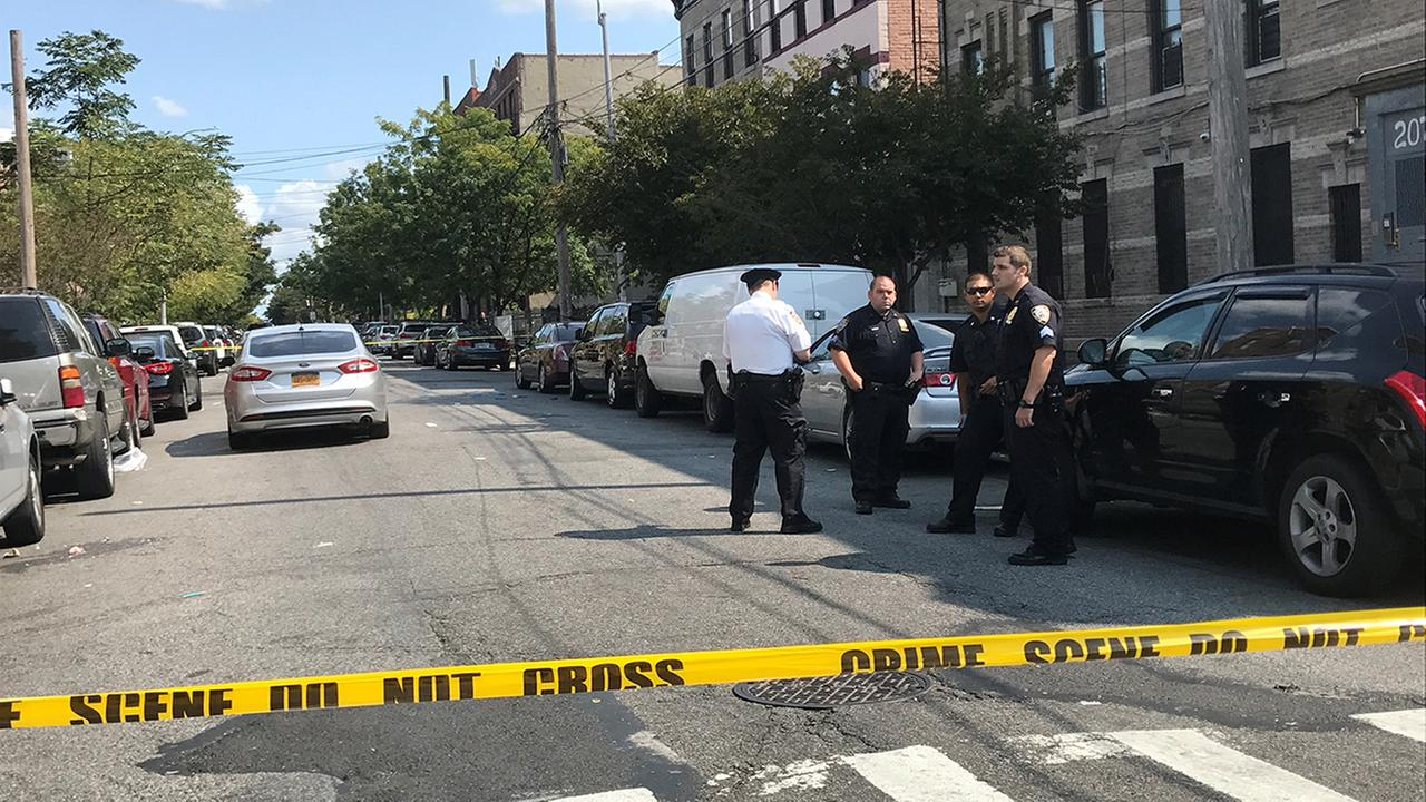 Woman in critical condition after being shot in the head in Brooklyn