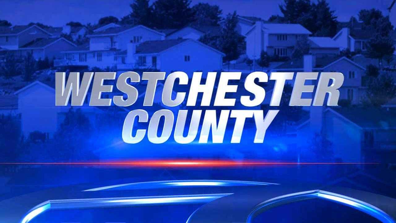 Police investigating possible abduction from White Plains bus stop