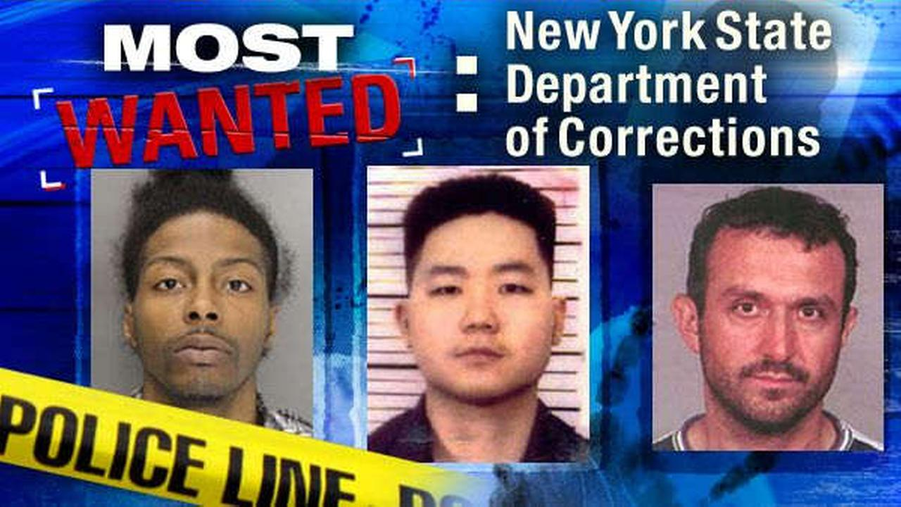 most wanted new york state
