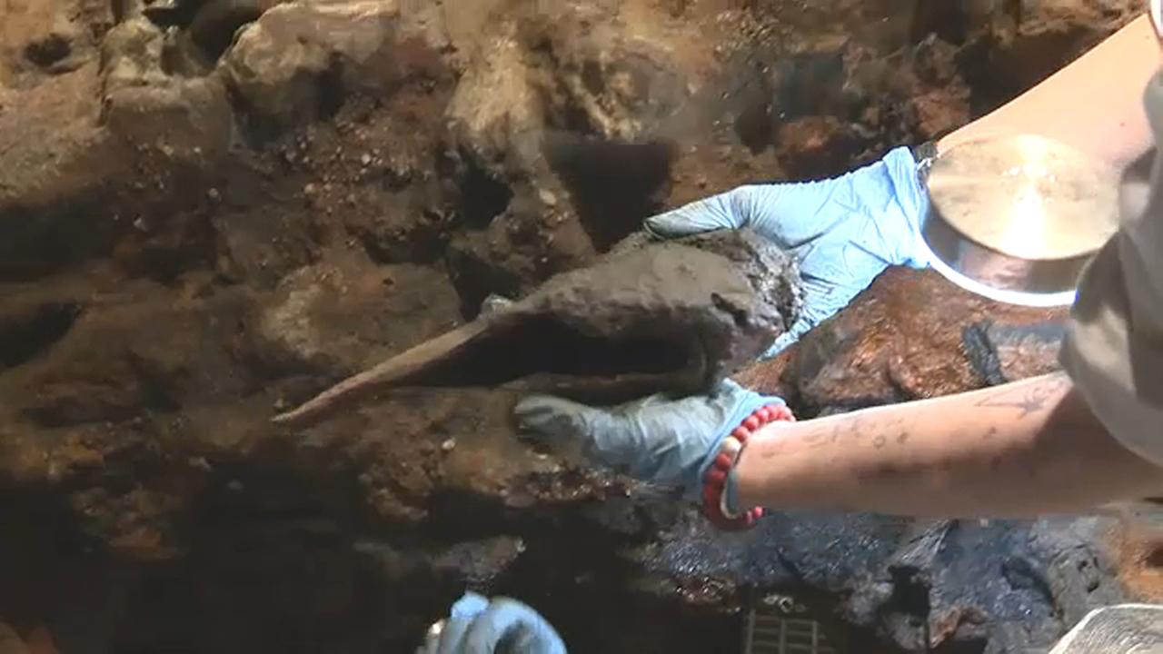 Bone recovered from Cape Cod shipwreck could belong to infamous pirate