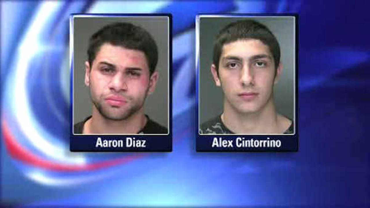 Suffolk County teens charged with stealing packages from homes