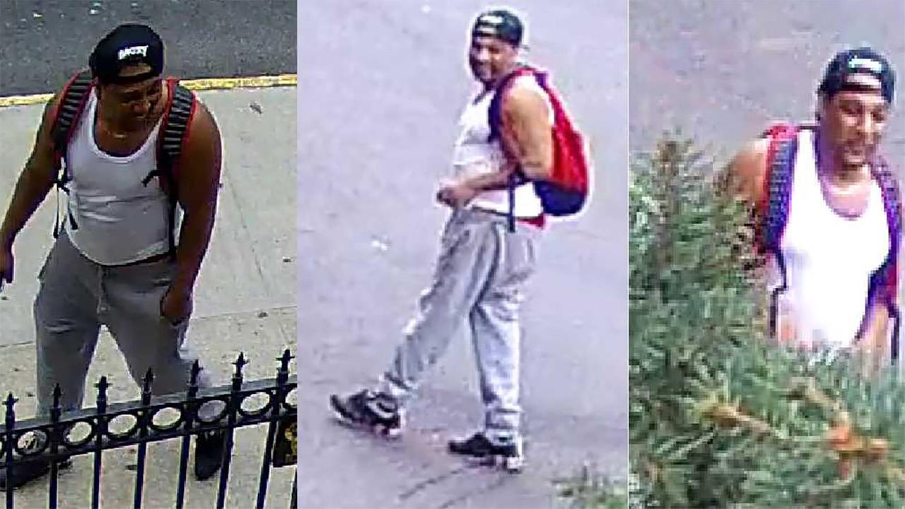Man arrested in attempted rape of 82-year-old woman in the Bronx