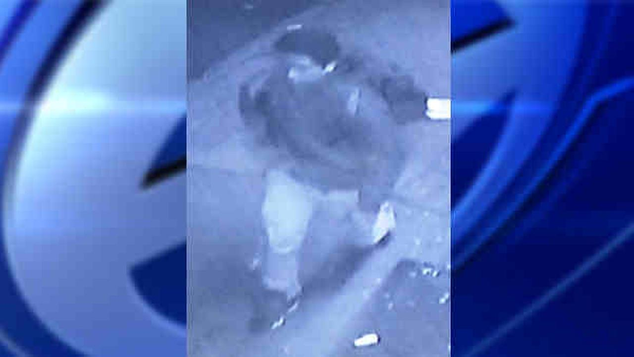 NYPD seeking suspect who attempted to rape 24-year-old woman