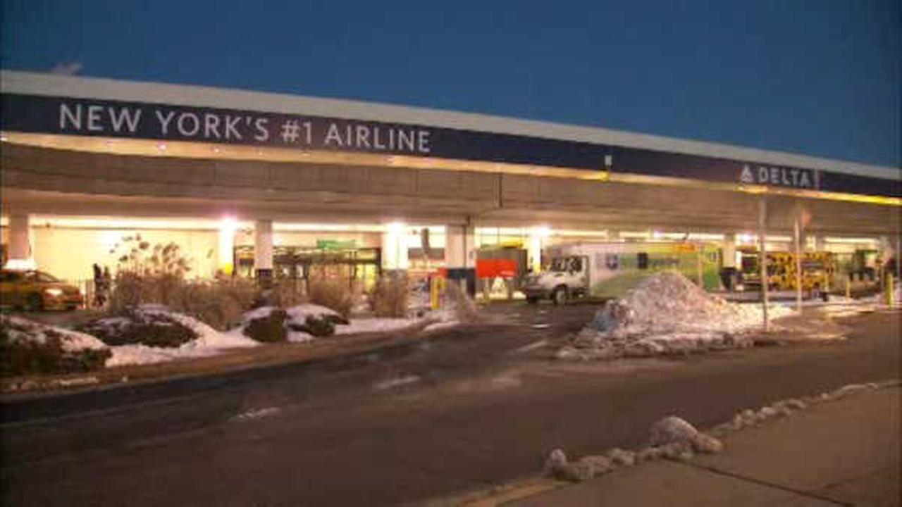 Paramedic helps save elderly woman before emergency landing at LaGuardia