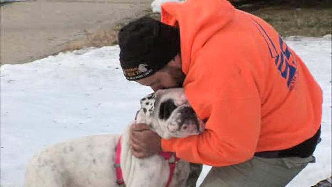 Long Island man reunited with dog missing for more than 2 years