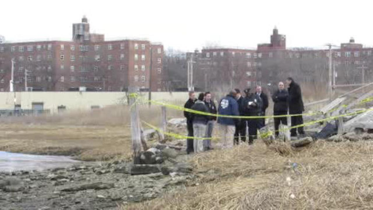 Remains found in duffel bag in Queens identified