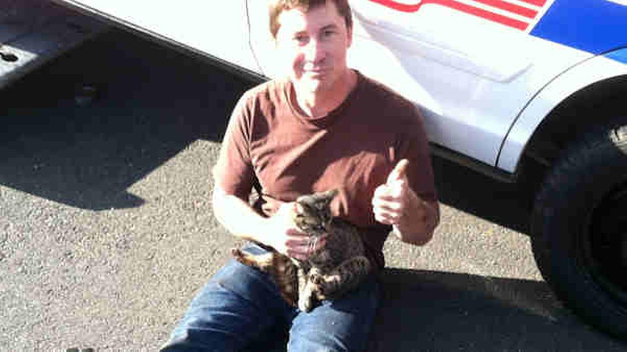 Lost cat rescued by NJ cops