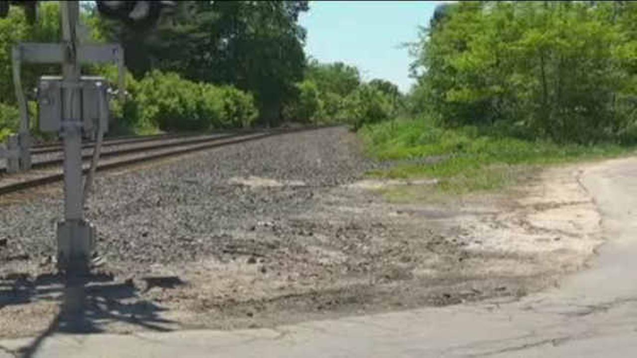 A head scratcher: 9 brains found next to train tracks in upstate New York