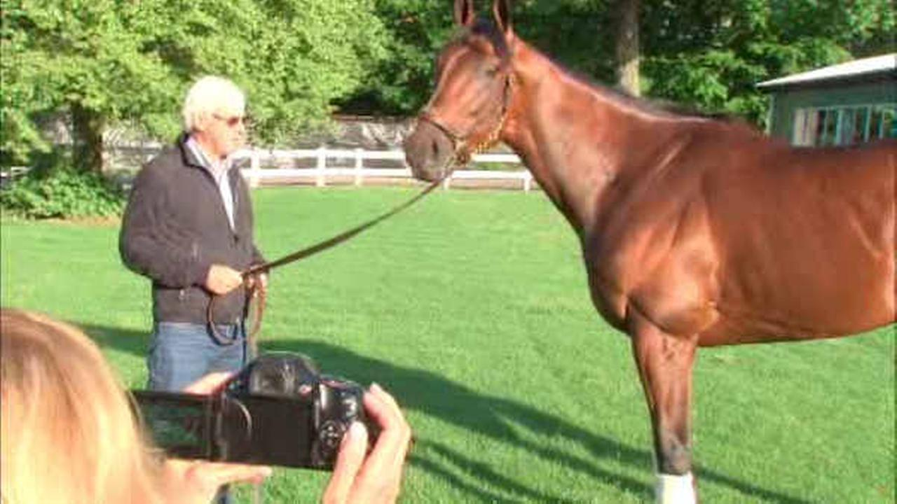 American Pharoah arrives in New Jersey ahead of Monmouth Park race