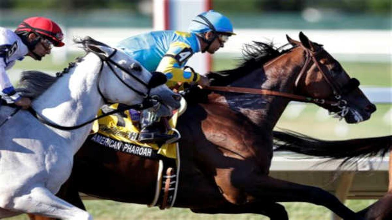 American Pharoah wins Haskell at Monmouth in first race since taking Triple Crown