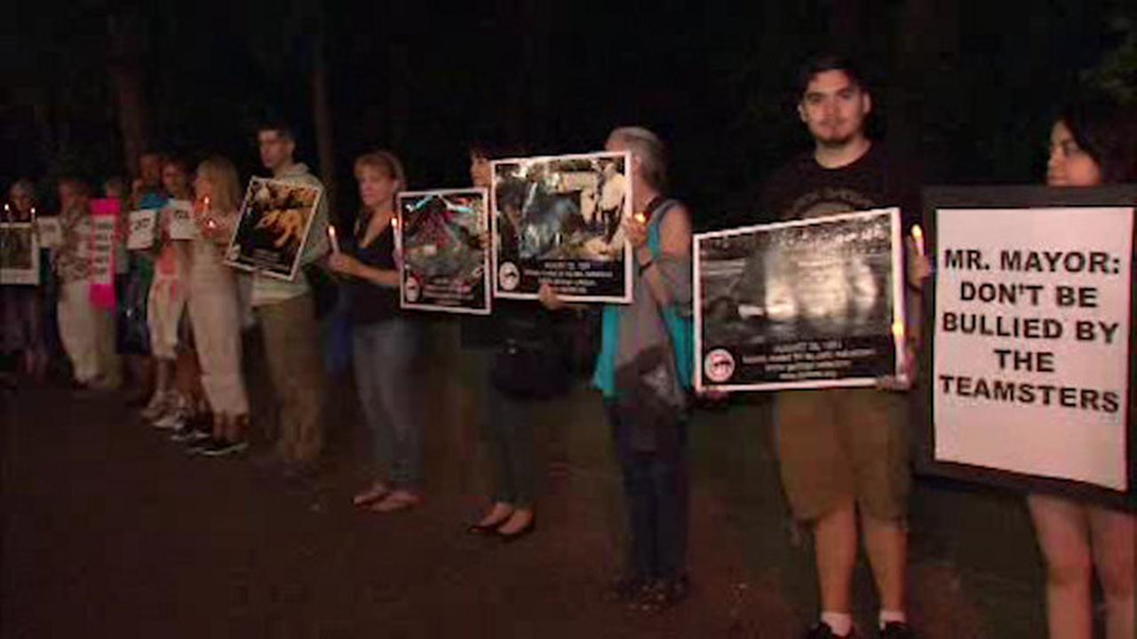 Activists hold vigil against horse-drawn carriages, critical of mayor