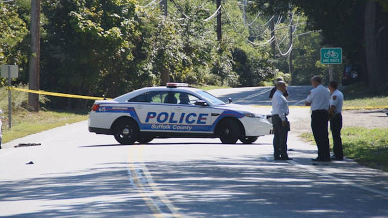 Police search for hit and run driver in Coram