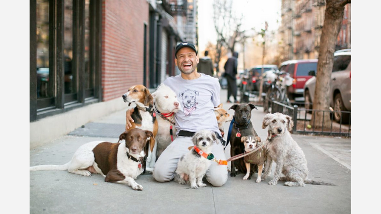 Dog-Friendly Café 'Boris & Horton' Opens In The East Village