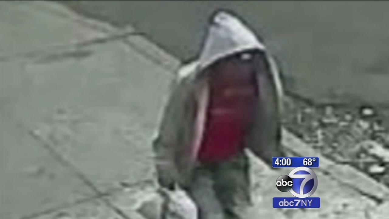 8-year-old girl attacked in attempted rape in the Bronx
