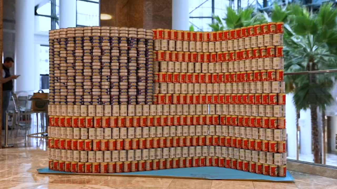 These giant structures made entirely from cans of food will feed thousands of people after being on display at Canstruction New York.