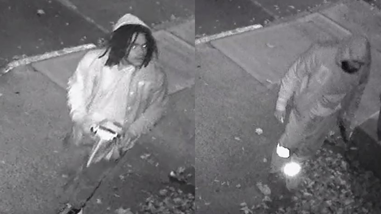 Suspects arrested in drawing of swastikas on Brooklyn homes