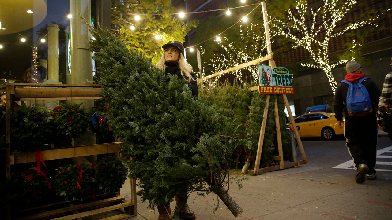 In this Tuesday, Dec. 8, 2015, photo, Laura Miller carries a tree she just sold at her Lauras Christmas Trees stand on the Upper West Side neighborhood of Manhattan in New York.