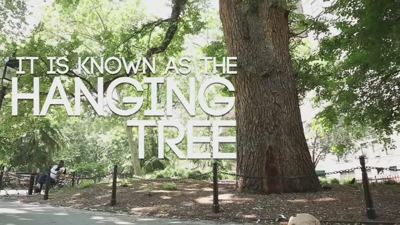 Hidden New York: The hanging tree
