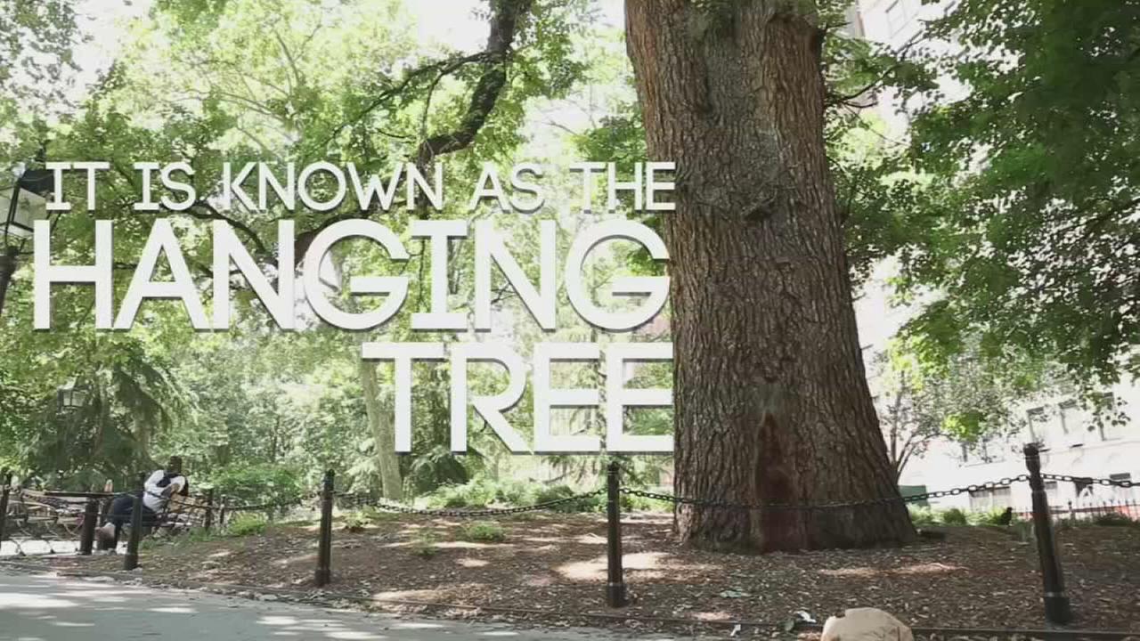 Hidden New York: The hanging tree